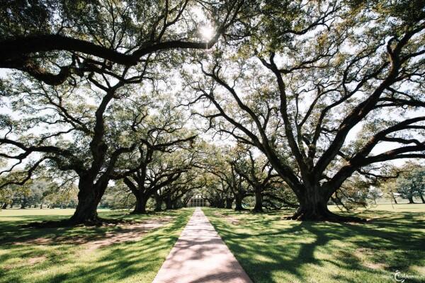 USA | Louisiana | Cajun Country
